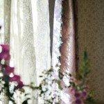 designersguild raamdecoratie