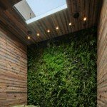 verticale groenwanden